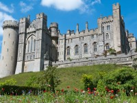 Top 5 things to do in Sussex